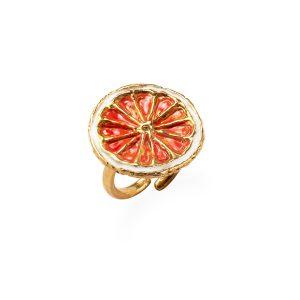 anello-G di FR 1